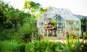 חממה ביתית בגן