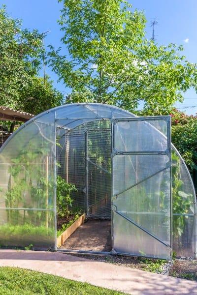 חממה ביתית לגידול ירקות