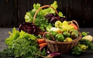 30 שתילי ירקות לגידול בחממה