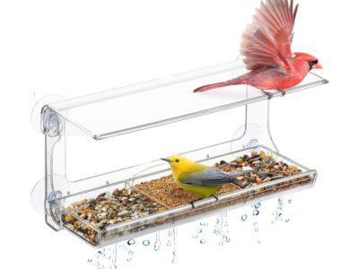 מתקן האכלה לציפורים לחלון