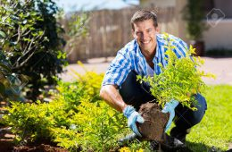28207725-happy-young-man-gardening-in-backyard