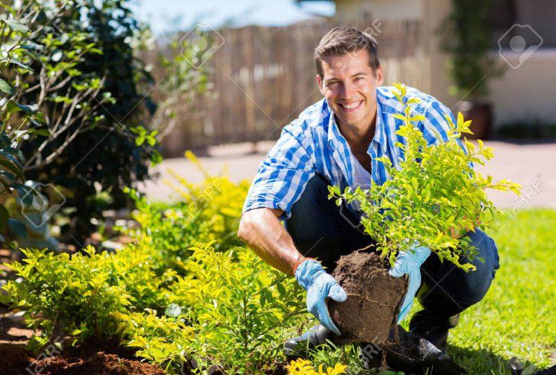 28207725-happy-young-man-gardening-in-backyard